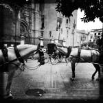 Sevilla Square